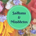Minddetox: Wie Sadhana am Morgen dein Leben verändern kann