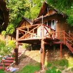 Vital-Coach Manfred Binder über das Glücks-Camp in Thailand