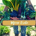 #1 Meine Ernte | Ich freue mich auf meinen ersten eigenen Gemüsegarten